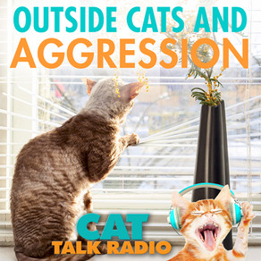 Outside Cats and Intercat Aggression