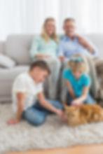 FamilyCat.jpg