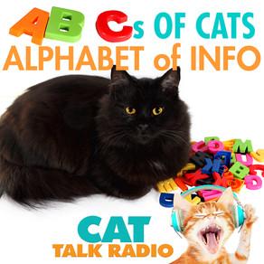ABCs of Cat - an Alphabet of Cat Info