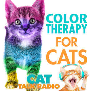 Color Therapy for Cats