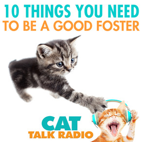 Is Fostering For You?