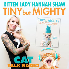 Interview with Hannah Shaw, The Kitten Lady
