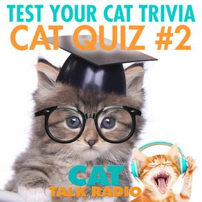 Cat Quiz #2!