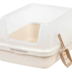 Attractive Litter Box - Step 2: TYPE