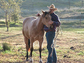Horse Whispering.jpg