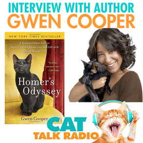Interview with Homer's Odyssey author, Gwen Cooper