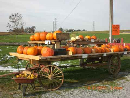 15 Things I Love Most About Fall