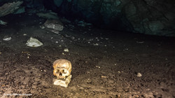 Mayan skull Cenote Yucatan