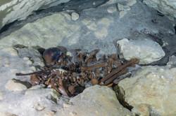 Human bones Cenote Yucatan