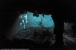 Cave Diving at Cenote Car Wash