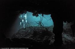 Cavern diving at cenote Aktun Ha
