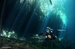 Cavern Diving at El Eden