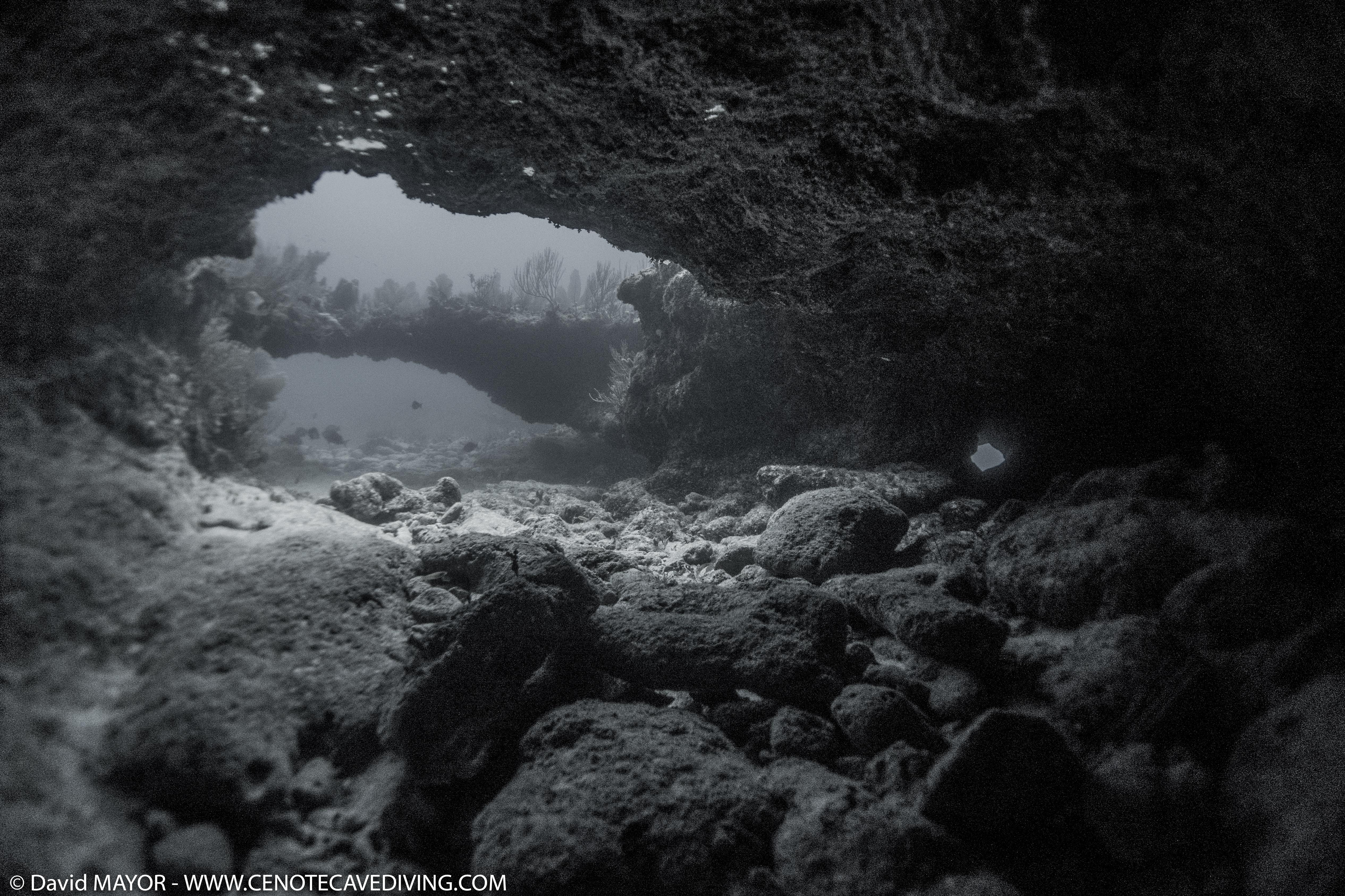 Cuevita - Tulum ocean reef