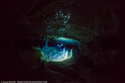 Cave Diving at Cenote Nariz