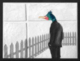 WHO'S THAT BIRD.jpg