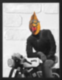 zBIRD ON BIKE.jpg