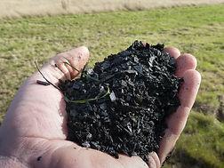 třídění odpadu | biouhel