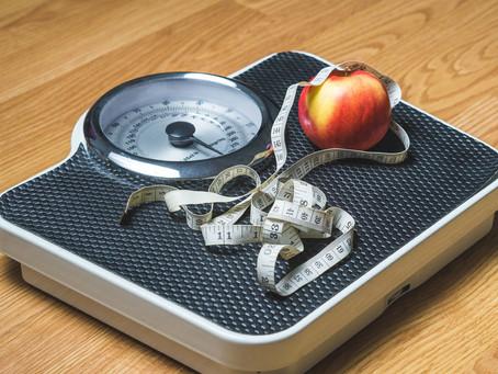 obesity & brain
