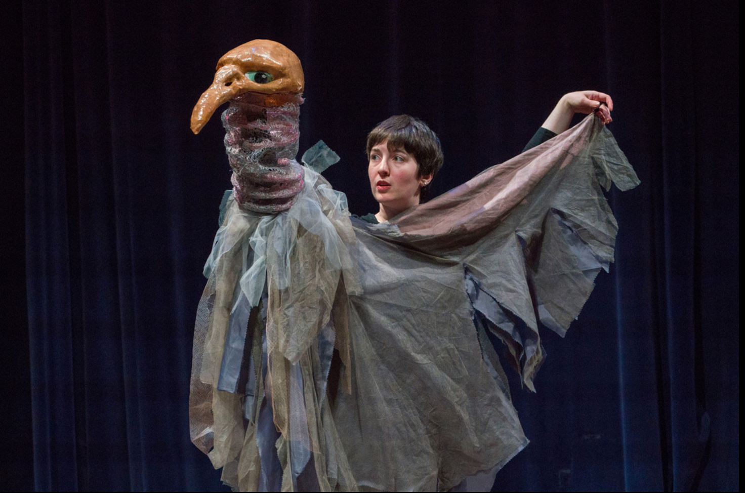 Vulture Performance