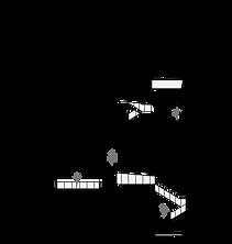 11-UNIVERSIDAD_CIUDAD-SECCION-A.png
