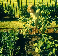What's Growing in Your Garden?