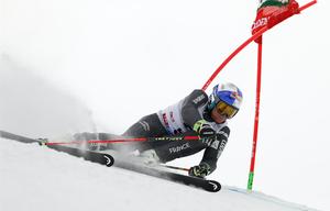 Pinturault Alexis Head Skis