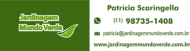 assinatura patricia.png