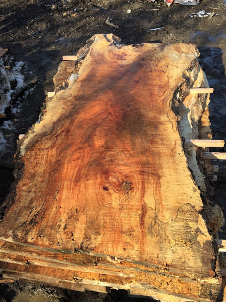 Silver Maple Slab