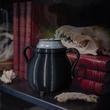 Can Cauldron