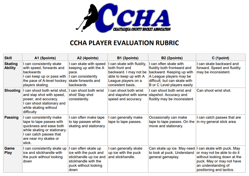 Player Evaluation Rubric.png