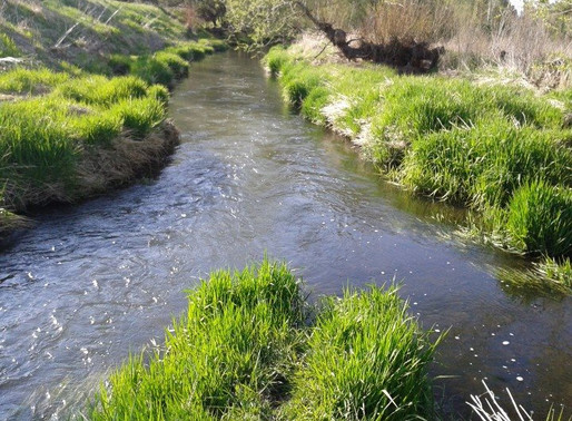 "On John Walton's Poem ""What's concerning"" / On the Palouse River"