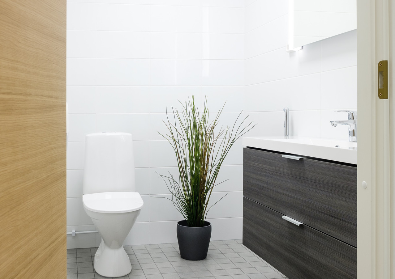 Tyylikäs toimisto-WC