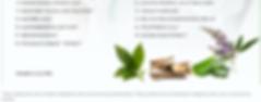 ingredients2.PNG