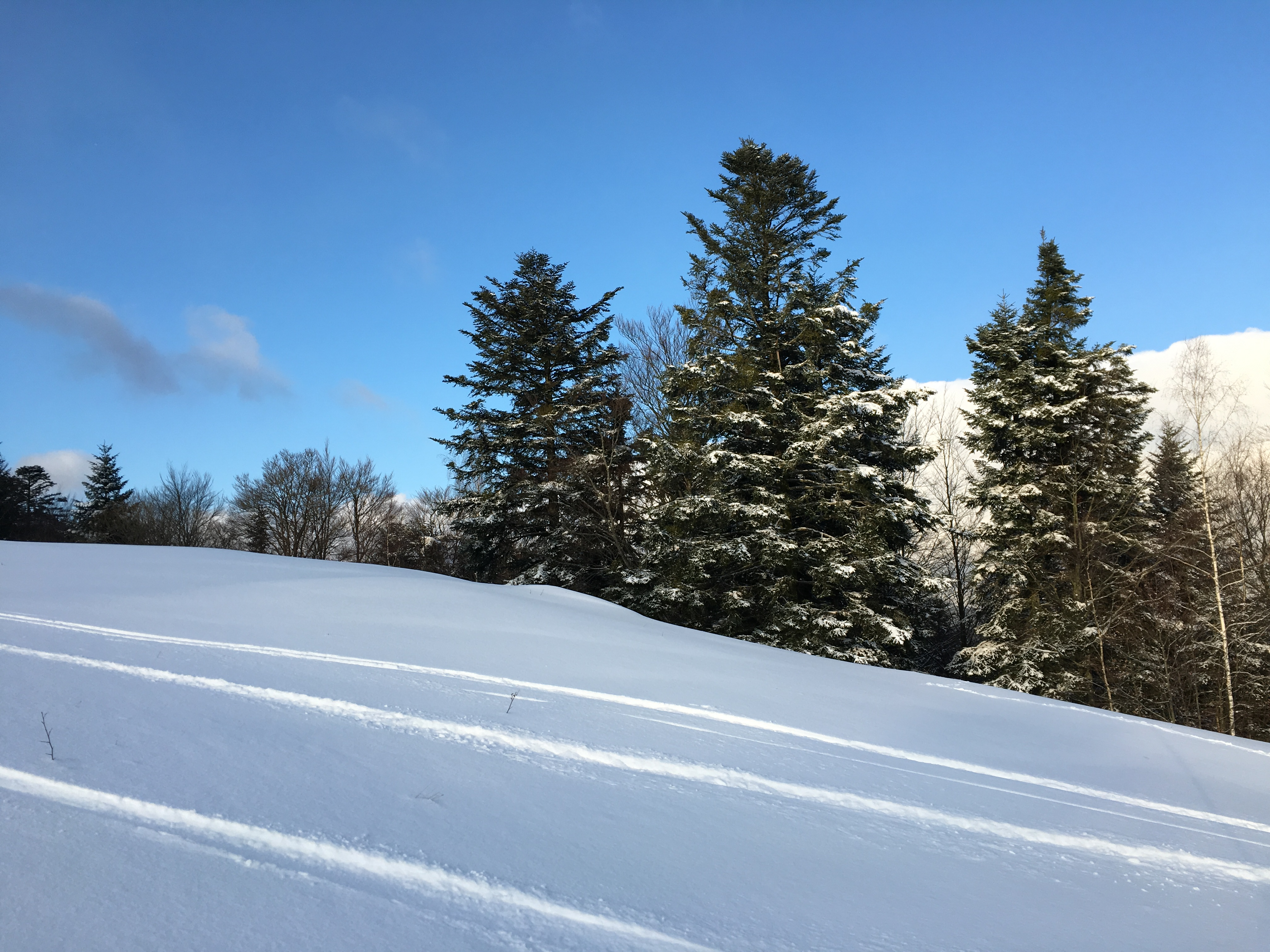 Schlumpf ski dolleren