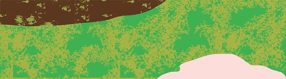 Broccoli_Web_Graphics-07.png
