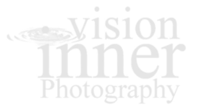 IV Photog Watermark_10_OP_crop1.jpg