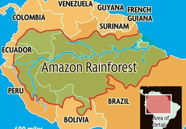 the-who-disappeared-amazon-rainforest-ma