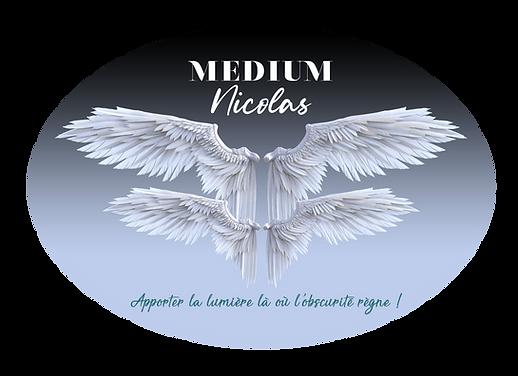 Logo Nicolas Medium 3[2853].png