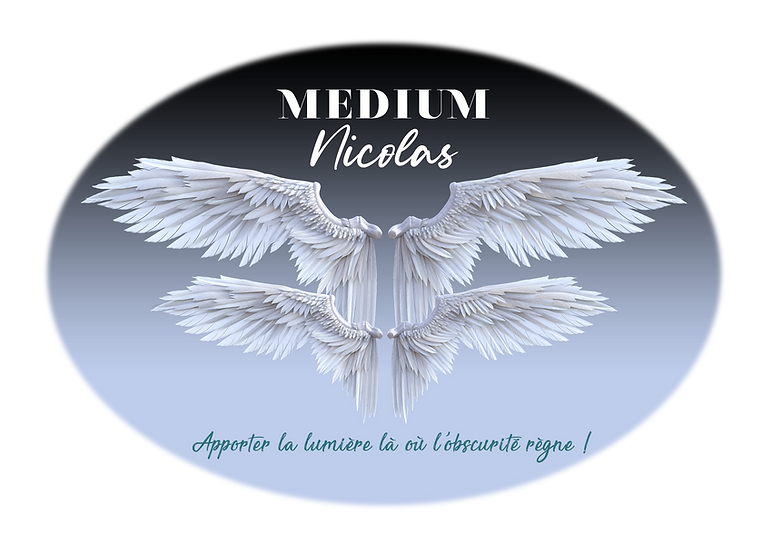 Logo Nicolas Medium 3[2853].png