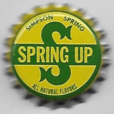 SIMPSON SPRING SPRING UP