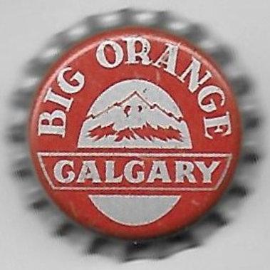 CALGARY BIG ORANGE