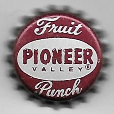 PIONEER VALLEY FRUIT PUNCH