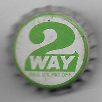 2WAY PIN