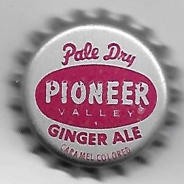 PIONEER VALLEY PALE DRY GINGER ALE