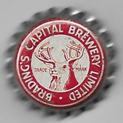 BRADING'S CAPITAL BREWERY LIMITED