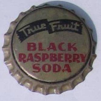TRUE FRUIT BLACK RASPBERRY