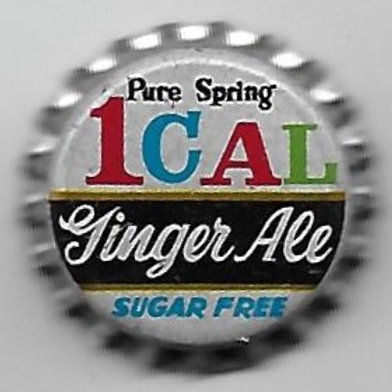 PURE SPRING GINGER ALE, SUGAR FREE 1 CAL