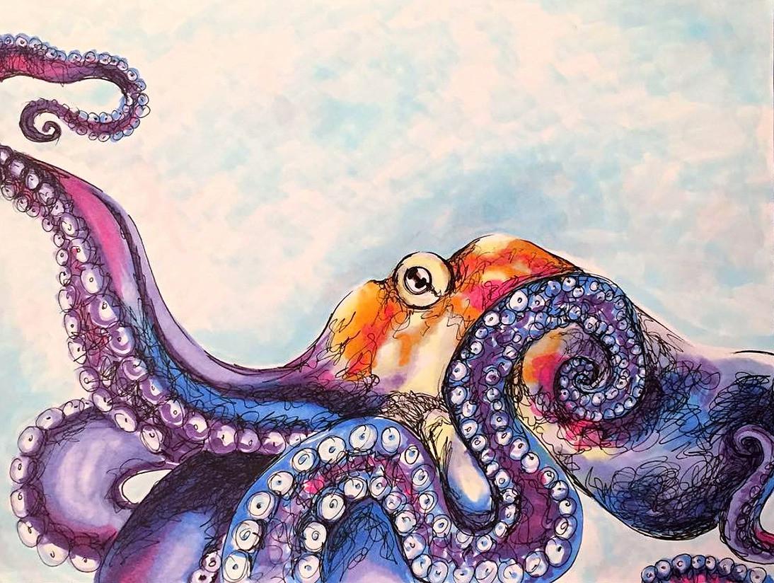 Octopus, 2017