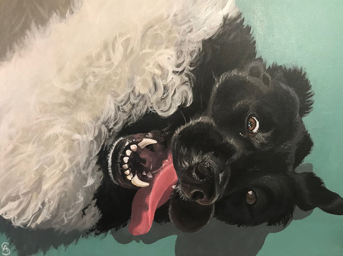 Dog Portrait, 2018
