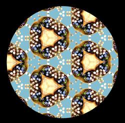kaleidoscope of colors + seashells